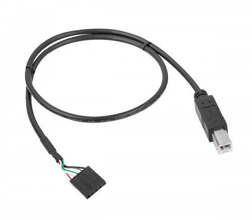 USB B plug.jpg