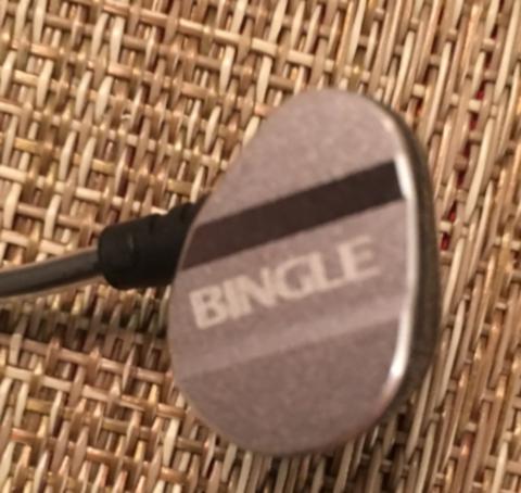 bingleearback.jpg