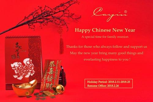 2018 Chinese New Year.jpg