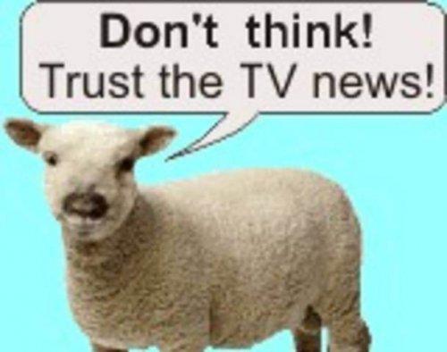 sheeple-tv2.jpg