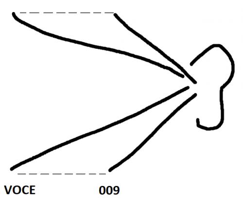 009 vs VOCE.png