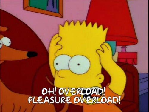 Pleasure Overload.jpg