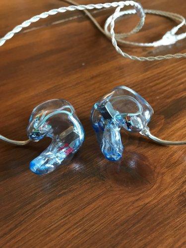Ear 2.JPG