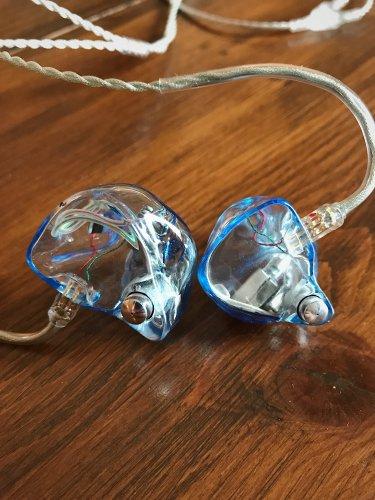 Ear 3.JPG