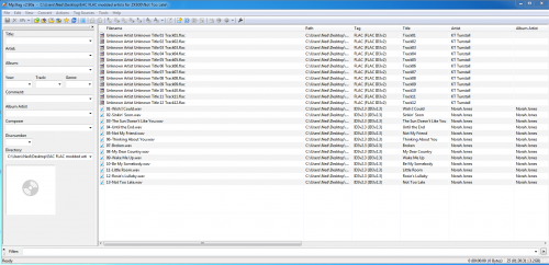 ZX300 files not showing..png