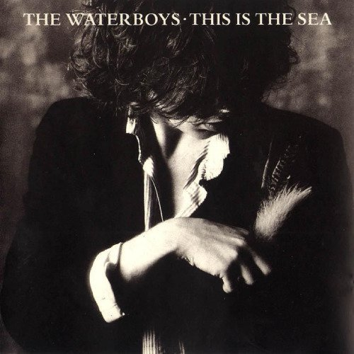 Waterboys_This Is The Sea.jpg