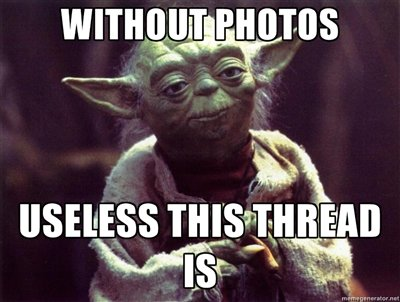 yoda-without-pics-this-thread-is-useless-BWVHSx_zpsf4c01222[1].jpg