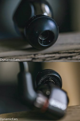 dynamic ears 011 (1493).jpg