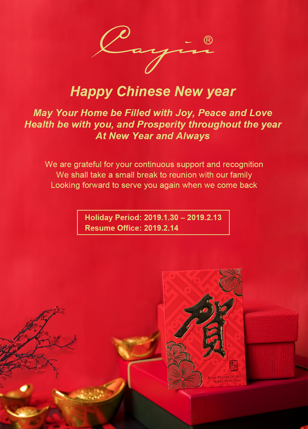 Chinese New year 2019.jpg