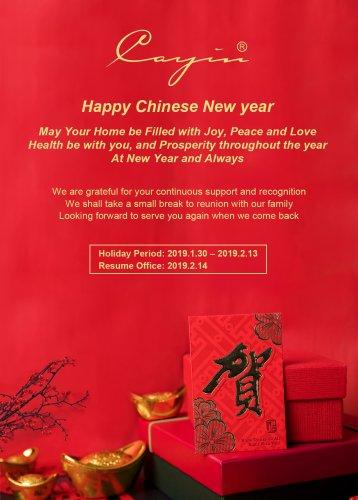 Chinese New year 2019.jpg