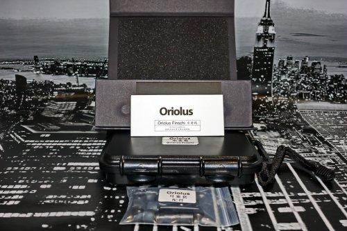 Oriolus Finschi 06_resize.jpg