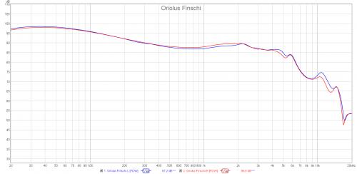 Oriolus Finschi.png