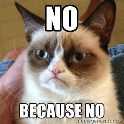 grumpy-cat-no-memes.jpg
