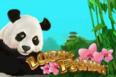 lucky-panda.jpg