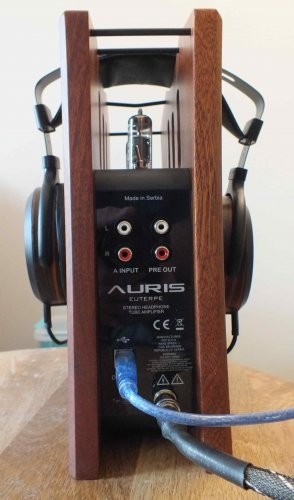 Auris-Euterpe-rear.JPG