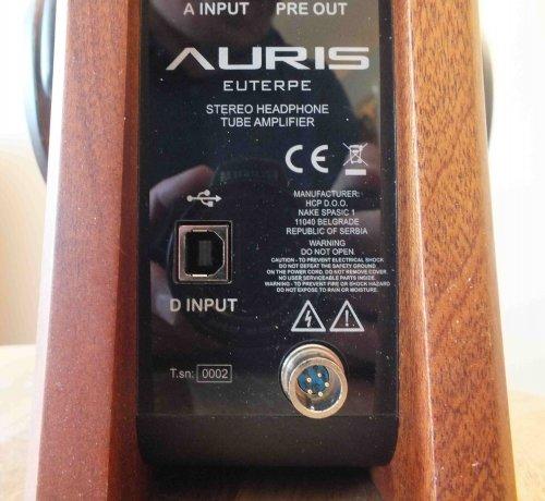 Auris-Euterpe-rear3.JPG
