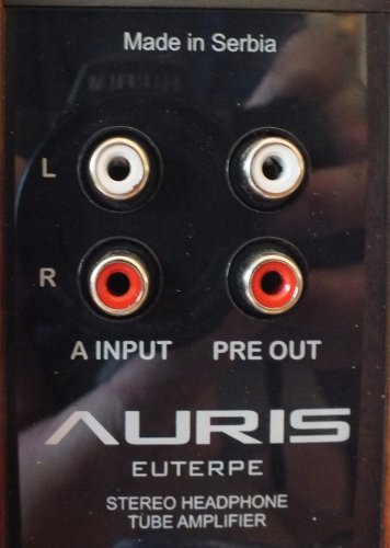 Auris-Euterpe-rear-detail1.JPG