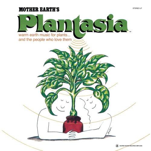 sbr3030-plantasia-300_1024x1024.jpg