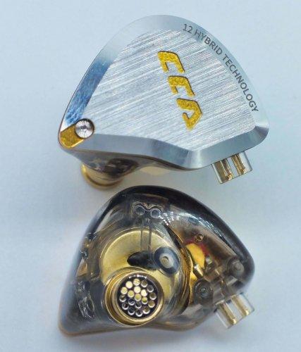CCA-C12-pair1.JPG