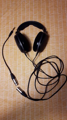 HD650 XLR.jpg