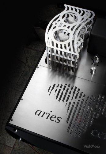 Aries_Cerat_Genus_08.jpg