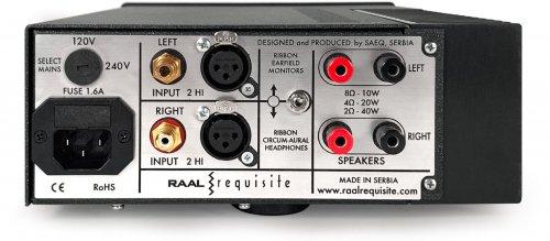 Back of Raal Amplifier.jpg