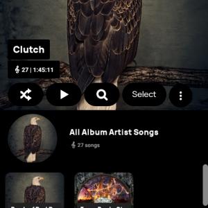 library 11 artist album grid.png