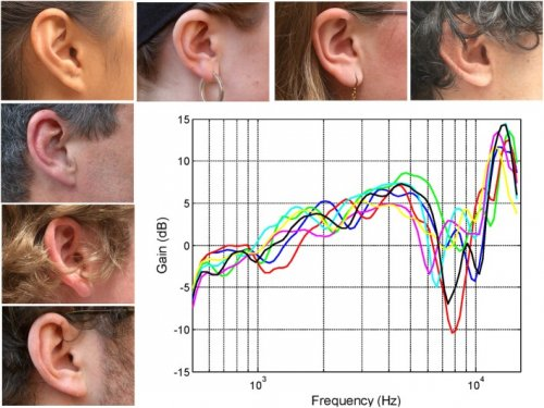 The-right-ears-of-seven-subjects-together-with-their-associated-head-related-transfer.jpg