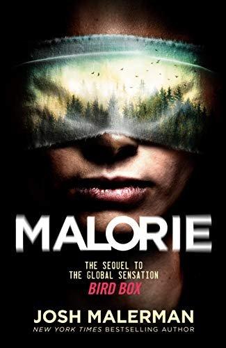 Mallorie_Bird Box.jpg
