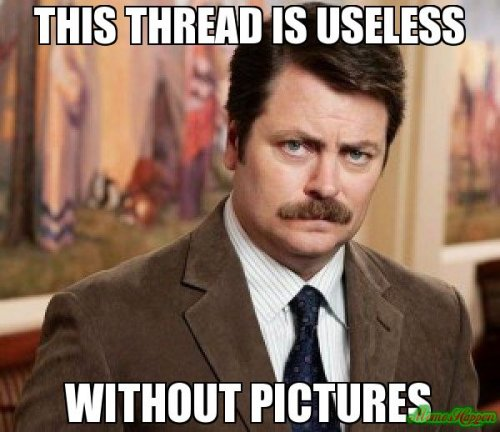 this-thread-is-useless-without-pictures-meme-9253.jpg