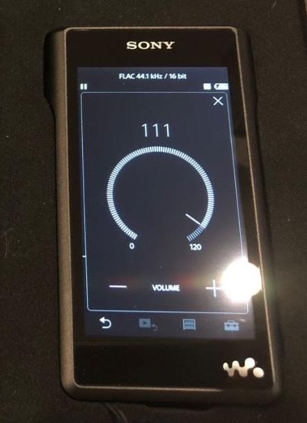 1754310-ec9fac7b-sony-wm1a-walkman-128gb-sandisk-256mb-microsd-44-balanced-cable-and-micro-us...jpeg