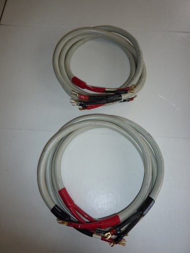 2 x 5 ft. Monster Cable M1 ''Sonic Reference''.JPG