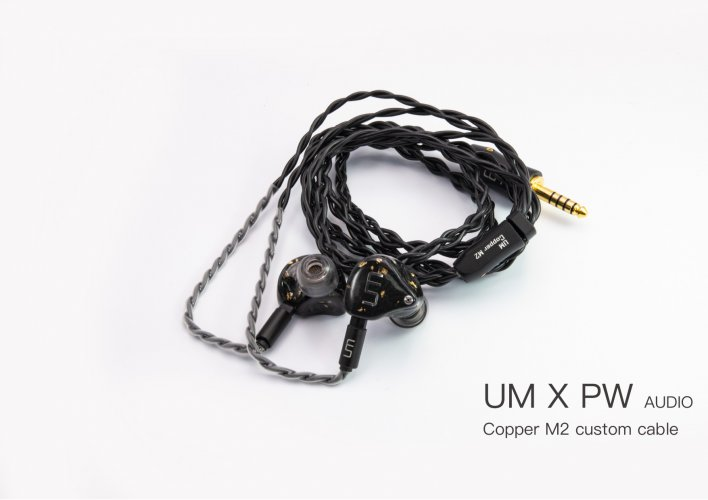 Mk2 x PW Cable 2.jpg