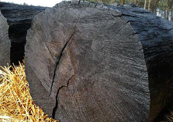 ancient-wood-bog-oak-supplier.jpeg