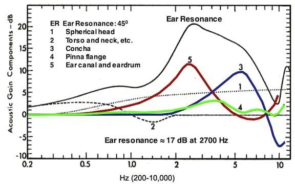 Ear-resonance.jpg