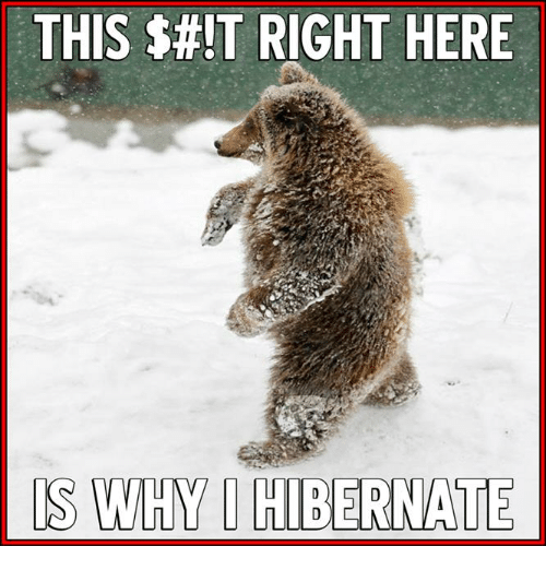 this-it-right-here-is-wmhm-hibernate-12012182.png