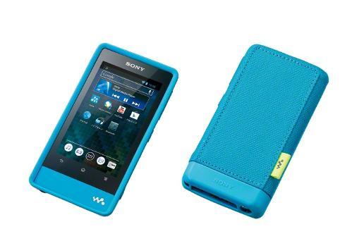 SonyF800seriessoftcaseblue.jpg