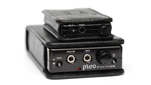 Pico_Power_DSC_6101.jpg