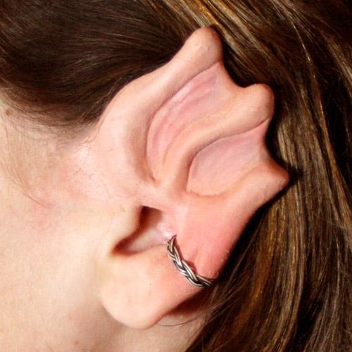 earsea_web-500x500.jpg