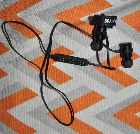 BLU-100_Ear.jpg