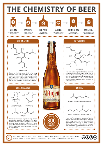 The-Chemistry-of-Beer-v3.png