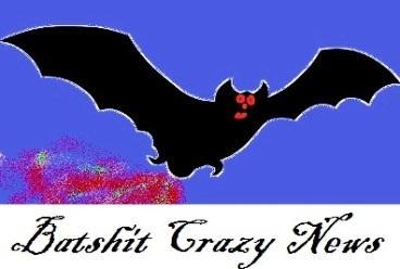 Batshit-Crazy-Logo-smaller.jpg