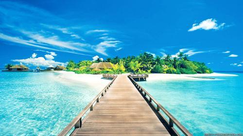 paradise-005.jpg