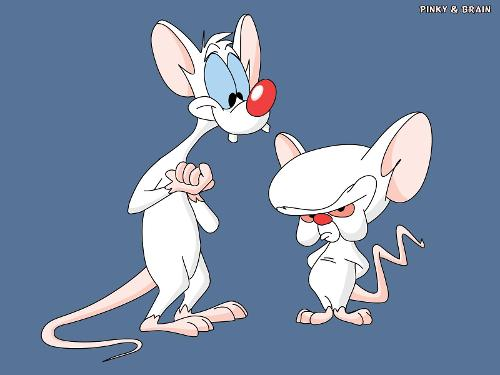 Pinky-And-The-Brain-Wallpapers.jpg