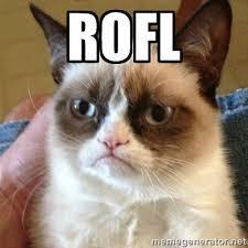 ROFLSadcat.jpg