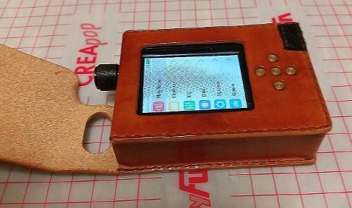 ZishanDSD_Leather_Case5.jpg