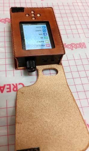 ZishanDSD_Leather_Case4.jpg