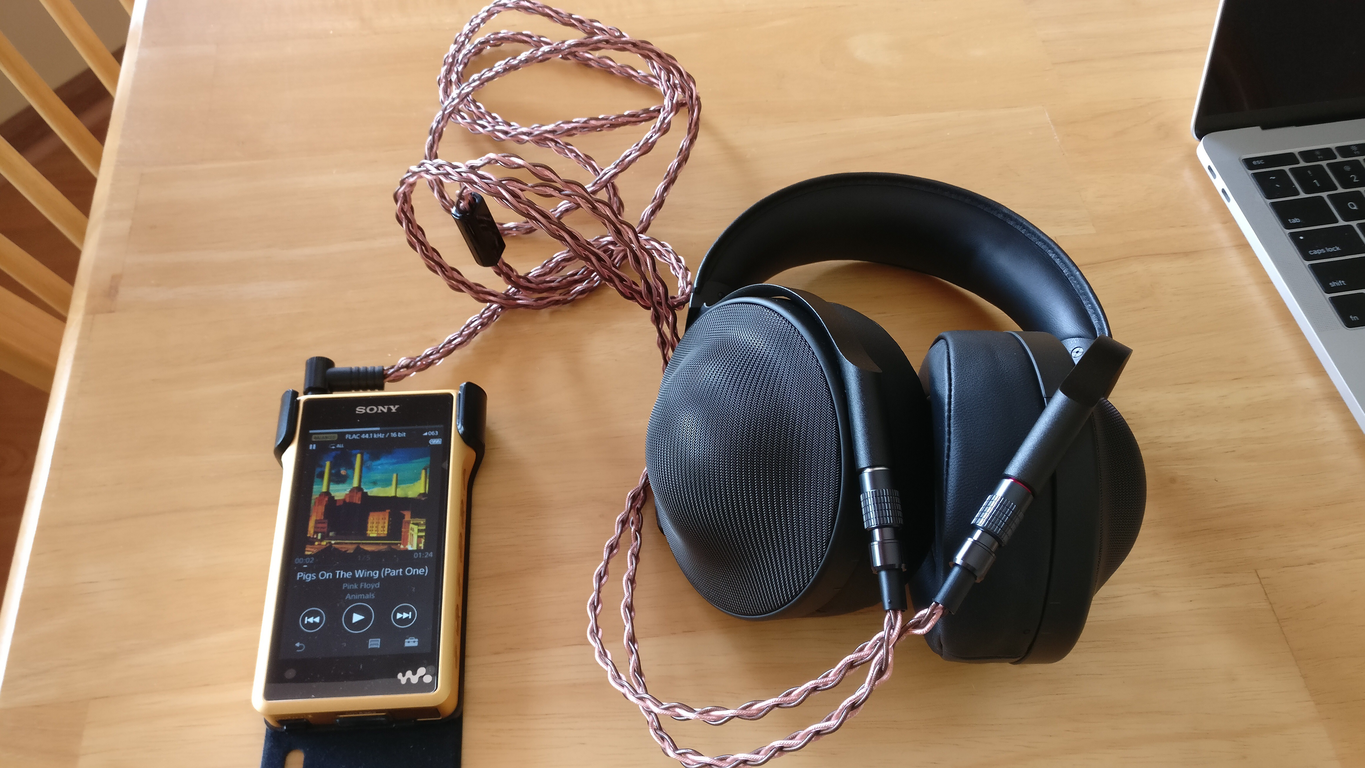 Sony Walkman With High Resolution Audio Nw A36 Black Wm1z Wm1a Page 824 Headphone Reviews And Discussion Img 1723