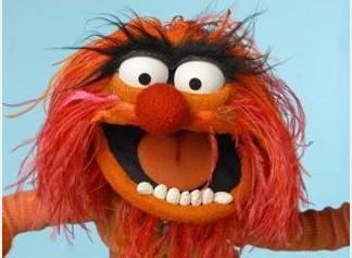 animal-muppet-e1312076844754.jpg