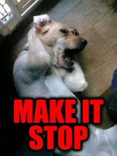make-it-stop.jpg